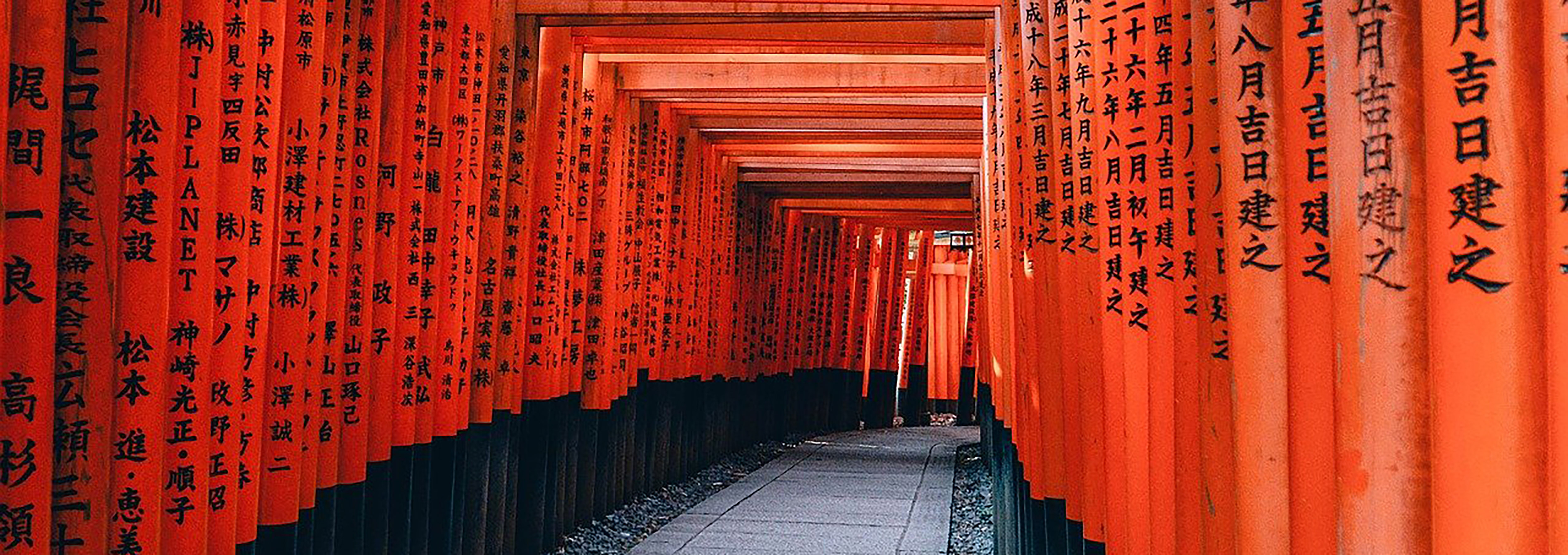 Red poles with Japanese characters create a tunnel